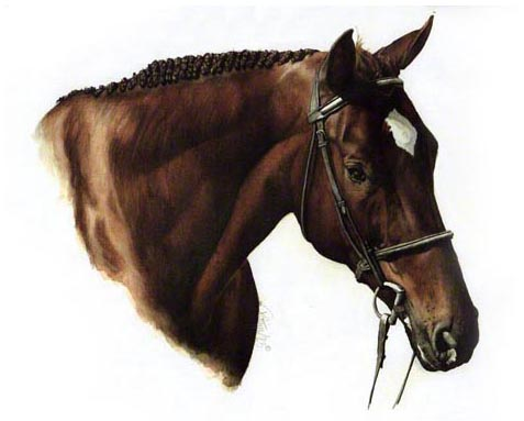 "Dave's Horse is a 11""x14"" Watercolour Painting. Dave commissioned me to do this art as a present for his wife."