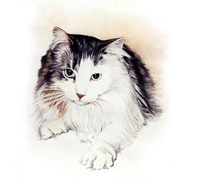 Long-haired Kitty Painting