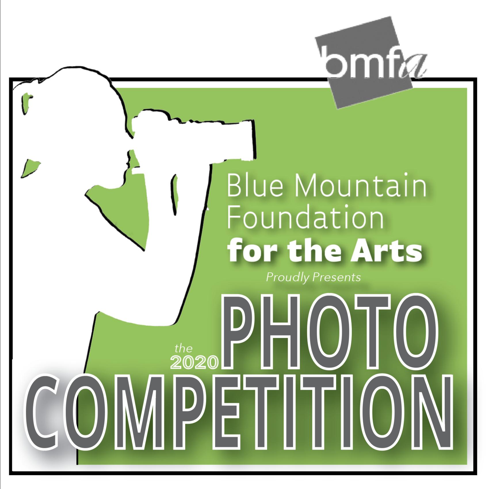 BMFA Photo Show